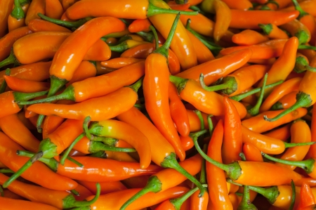 Spicy yellow peppers, used as an ingredient in food.