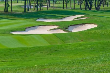 columpio: Brillante hierba verde campo de golf en el campo abierto.