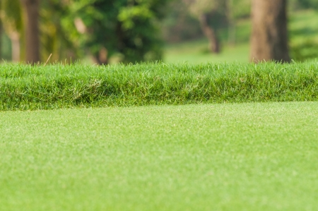 Bright green grass golf course in the field wide open. photo