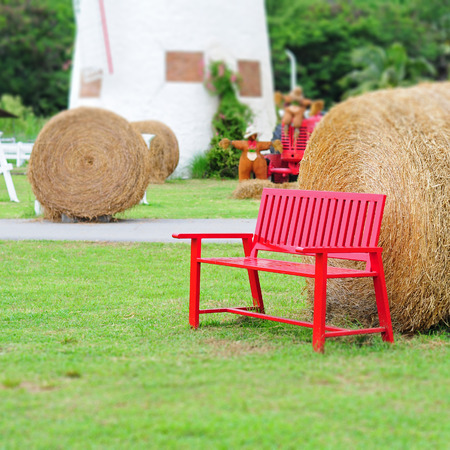 Red chair in the garden With straw and green grass. photo