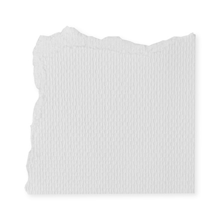 Torn white paper blank on white background. photo