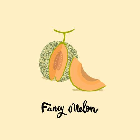 Vector melon illustration. Orange ripe melon on light background. Textured menons, juice japanese fruit. One slice and the whole fruit.