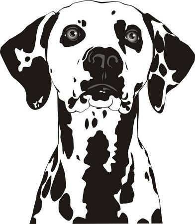 Con manchas de perro con las orejas al final. Ilustración de vector