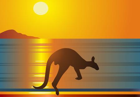 red kangaroo: The kangaroo jumps against a red sunset