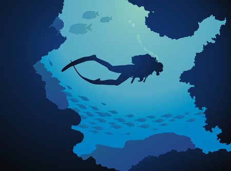 undersea: El buzo flota a trav�s de arrecifes en un entorno de peces