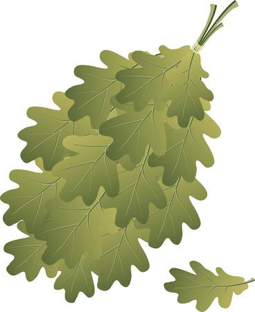The broom consists of oak branches Ilustração