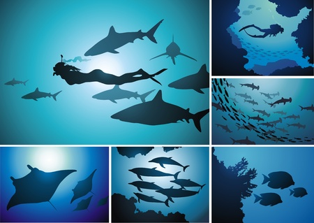 People with fishes and mammals in the underwater world