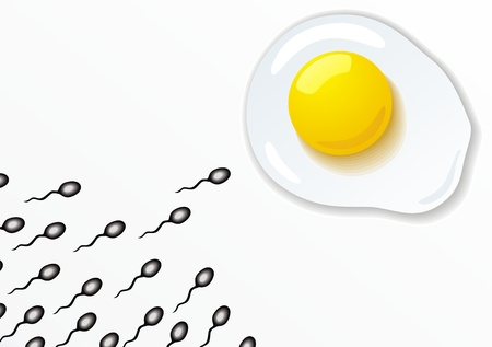 Sperm hasten to a female cell in the form of a chicken egg Vector