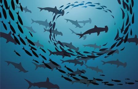 サメと海の魚の飛行 jambs を泳ぐ  イラスト・ベクター素材
