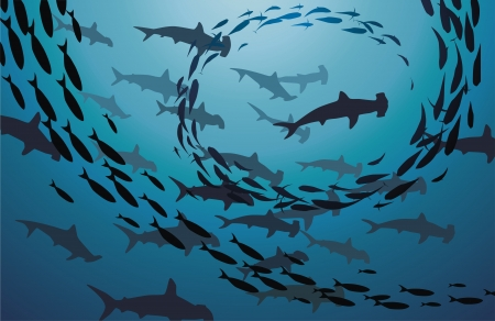 fish scales: The flight of sharks and sea fishes swim jambs