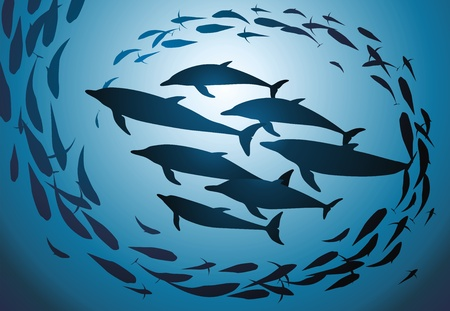 The flight of dolphins swims against a jamb of fishes Vector