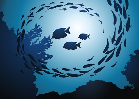 fish pond: Fish eats a coral among a jamb of other fishes