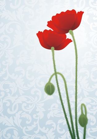 Two flowers of a poppy on a gentle background with a pattern Vector