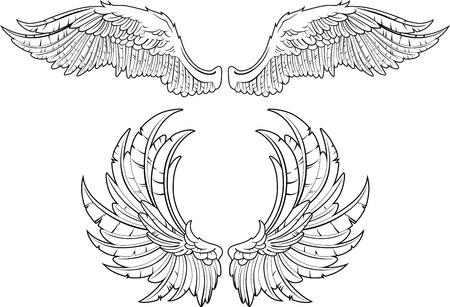 Twee soorten vleugels een nauwkeurige weergave van veren Stock Illustratie