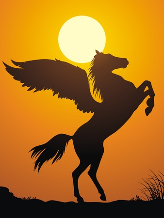 hoofs: Pegas has risen on back hoofs against a sunset Illustration