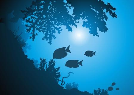 Oceanic korale i ościeżach ryb przed słońcem
