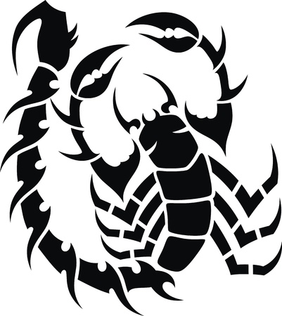 poisonous insect: Tattoo in the form of the stylized scorpion Illustration