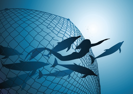 The mermaid rescues flight of dolphins from a fishing net Vector