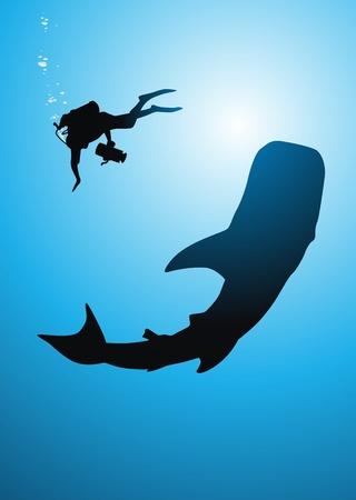 tail fin: El buzo extrae una ballena en una c�mara de video bajo el agua