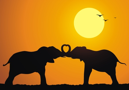 elephant trunk: Elephants express sympathy to each other against a sunset