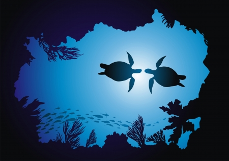 Two turtles float among reeves against the sun
