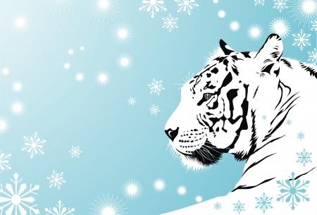De witte tijger ligt tegen een sneeuw achtergrond