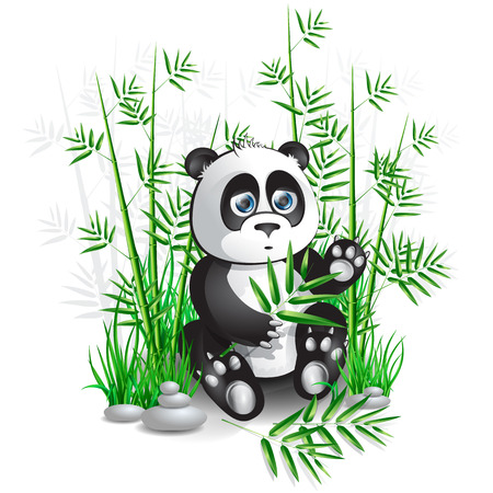 Panda sitting in bamboo branches and holding a branch of bamboo Vector