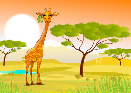 vector illustration Giraffe eating leaves in Africa at sunset Vector