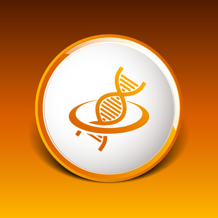 genetic: dna icon  life strand symbol curve graphic genetic.