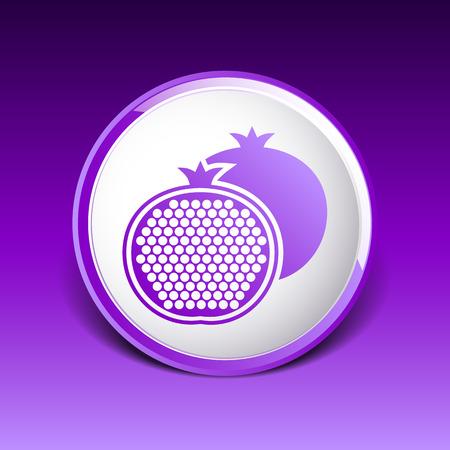 exotica: Pomegranate fruit slice icon