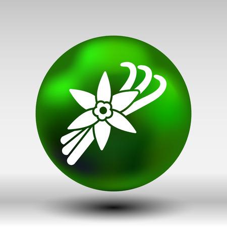 vainilla flor: Vanilla flor y vainas de vainilla Vector Logo.