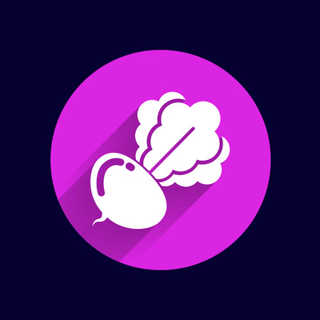 radish: Radish abstract isolated logo beetroot food vector.