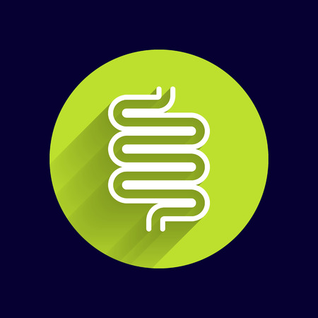 Flat modern design with shadow icons large intestine. Illustration
