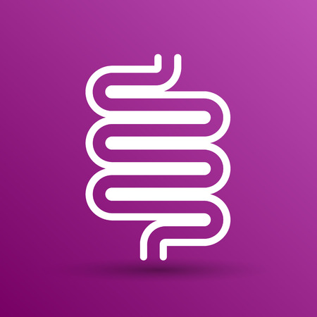 small intestine: Flat modern design with shadow icons large intestine. Stock Photo