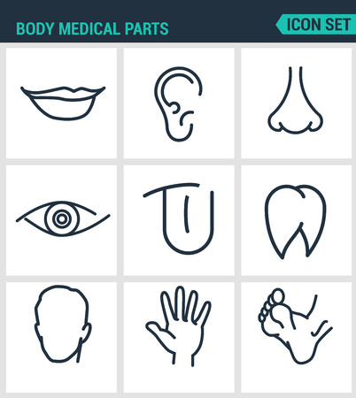 Set of modern vector icons. Body medical parts lips, ears, nostrils, eyes, tongue, teeth, head, hand, legs. Black signs on a white background. Design isolated symbols and silhouettes. Stock Illustratie