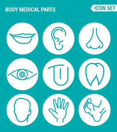 nostrils: Vector set web icons. Body medical parts, lips, ears, nostrils, eyes, tongue, teeth, head, hand, legs. Design of signs, symbols on a turquoise background