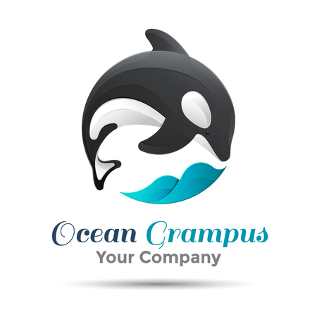 grampus: Vector illustration. orca whale. Isolated white background. Grampus. Killer . The concept of protection whales. design . Template for your business company. Creative abstract colorful. Illustration