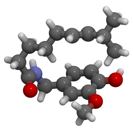 capsaicin: 3D molecular structure of capsaicin, the active component of chili peppers and pepper spray