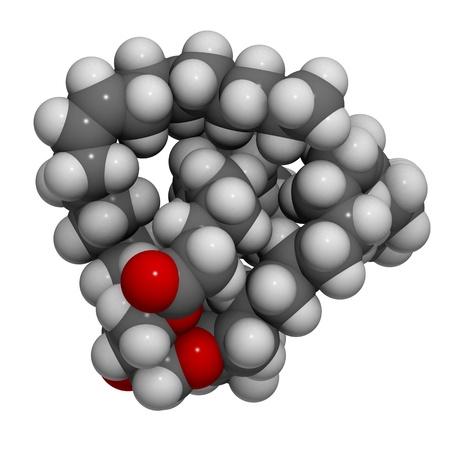 triglycerides: La estructura molecular en 3D de uno de los triglic�ridos insaturados del aceite de oliva y otros aceites vegetales.