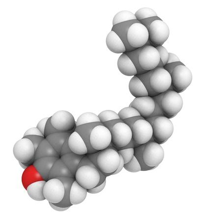 A molecule of Vitamin E (alpha-tocopherol) photo