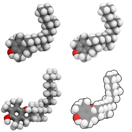 molekuul: A molecule of Vitamin E (alpha-tocopherol)