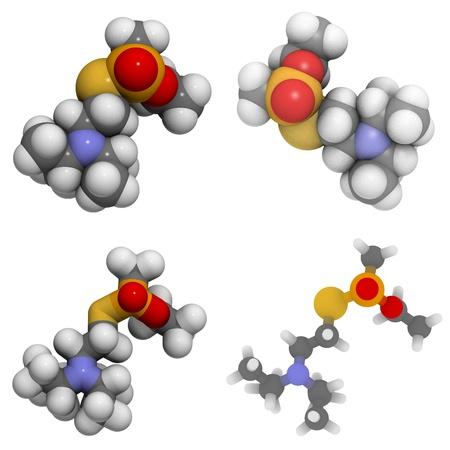 acetylcholinesterase: Molecule of VX, a nerve agent and weapon of mass destruction