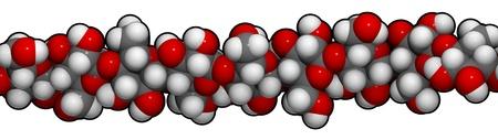 celulosa: detalle de una hebra de celulosa, el principal constituyente de algodón, madera y papel.