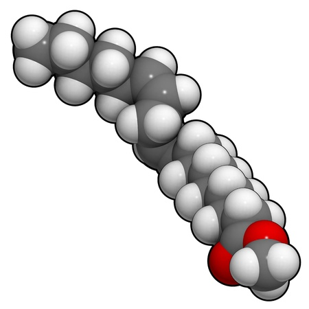 A molecule of methyl lineolate, one of the main components of biodiesel fuel. photo