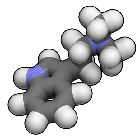 A molecule of dimethyltryptamine, a psychedelic tryptamine and the active principle in ayahuasca. Stock Photo - 13373386