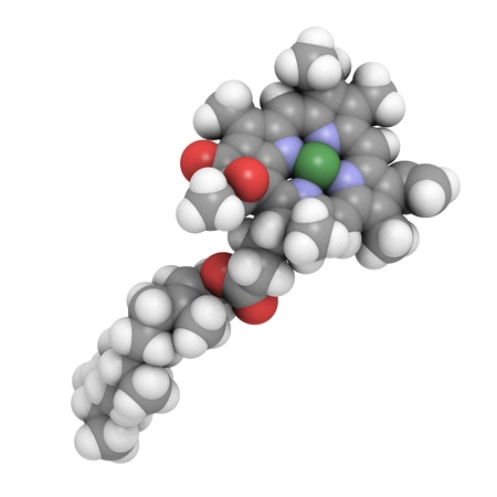 3D molecular structure of Chlorophyll A, an essential pigment in photosynthesis Stock Photo - 13614208