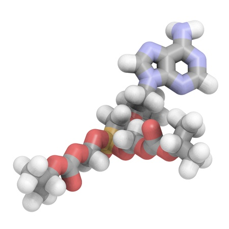 3D molecular structure of tenofovir, an antiviral drug used in the treatment of HIV Stock Photo - 13614209