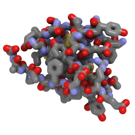 Chemical structure of a human insulin molecule. Insuline is used to treat type 1 diabetes. Stock Photo
