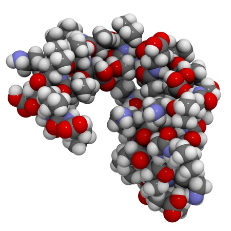 proteomics: Chemical structure of a dermcidin-1L molecule. Dermcidin is a protein found in human sweat and has antibacterial and antifungal properties.