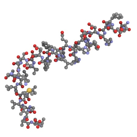 beta: Struttura chimica di beta amiloide (Abeta), che � strettamente associata alla malattia di Alzheimer. Abeta � il componente principale delle placche amiloidi.